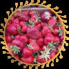 Саженец клубники Мармеладка: фото и описание