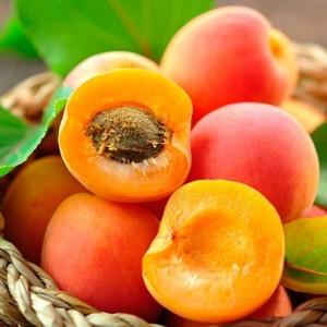 Саженец персика Мирабель