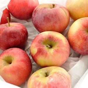 Саженец яблони Любава