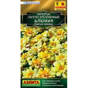 Семена бархатцов Алюмия ванильно-кремовые