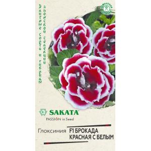 Семена глоксинии Брокада красная с белым ( Г )