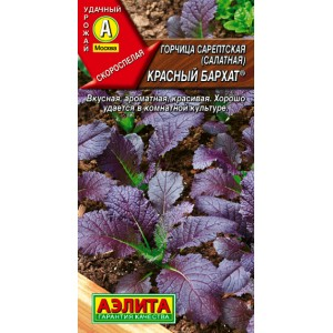 Горчица салатная Красный бархат | Семена