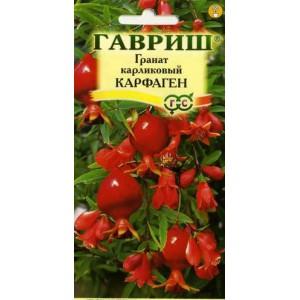 Семена граната Карфаген (карликовый) 5шт ( Г )