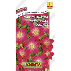 Семена камнеломки Пурпурная мантия