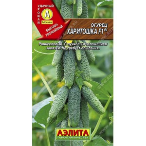 Семена огурцов Харитошка