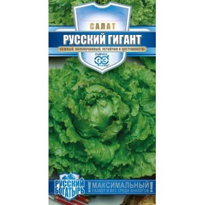 Семена салата Русский богатырь(гигант)( Г )