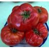 томат добрыня никитич арт. 5182