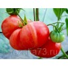 томат розовый гигант арт. 5192