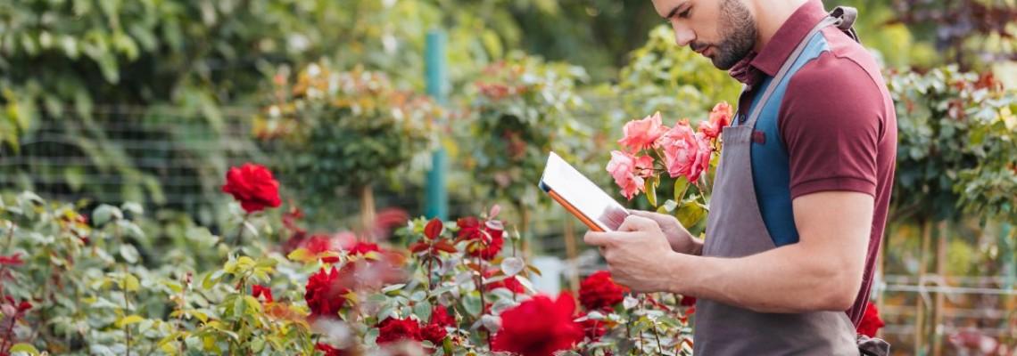 Бесплатная доставка почтой РФ </br> при 100% оплате заказа от 5000 руб.
