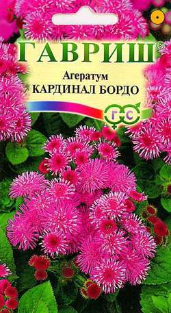 Семена агератума Кардинал бордо ( Г )