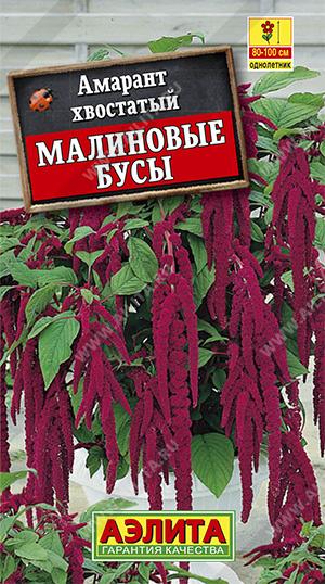Семена амаранта Малиновые бусы