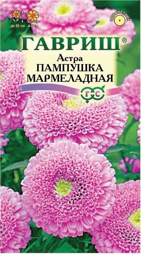 Семена астры Пампушка мармеладная ( Г )