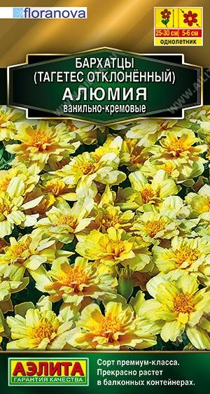 Бархатцы Алюмия ванильно-кремовые --- Одн Сел. Floranova Золотая серия