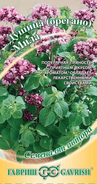 Семена душицы Мила (орегано) ( Г )