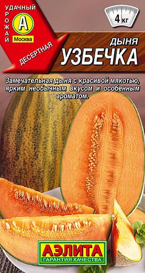 Дыня Узбечка