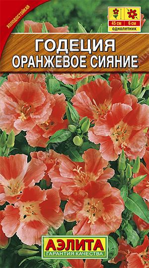 Семена годеции Оранжевое сияние