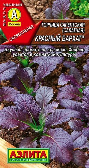 Горчица салатная Красный бархат   Семена