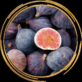 Саженец Инжира фиолетового ремонтантного Черный крымский: фото и описание
