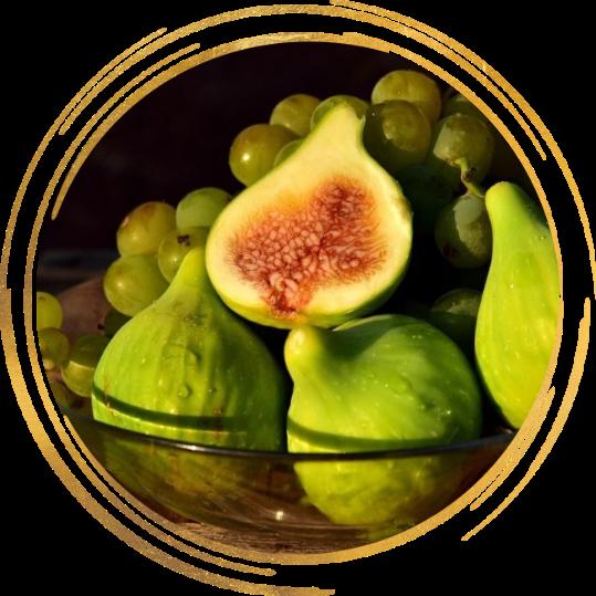 Саженец инжира желтовато-зеленого ремонтантного Долматский: фото и описание