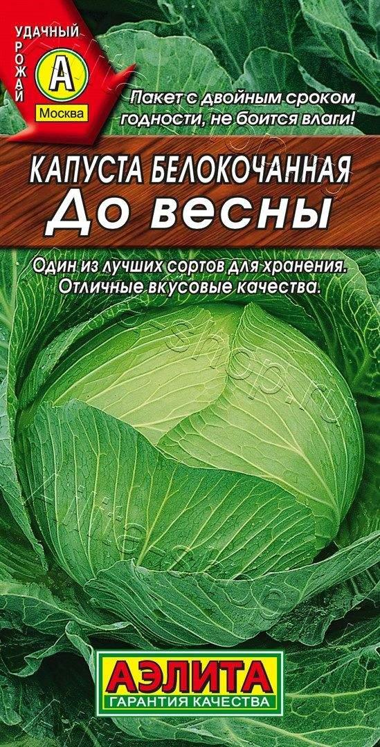 Семена капусты До весны б/к