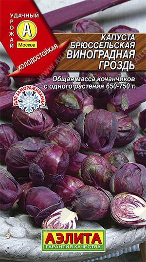 Семена капусты Виноградная гроздь брюссельская