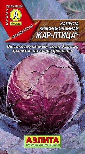 Семена капусты Жар-птица к/к