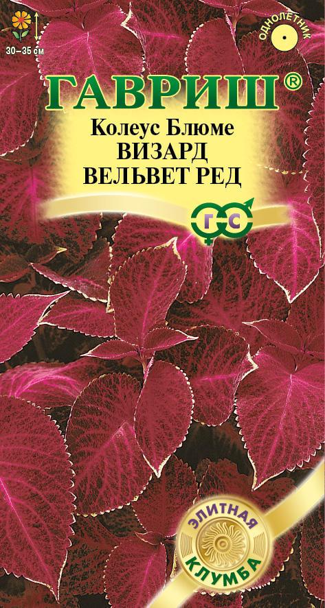 Семена колеуса Визард Вельвет ( Г )