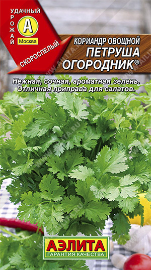Семена кориандра Петруша овощной