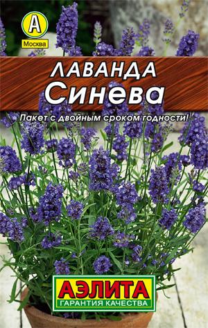 Семена лаванды Синева Лидер