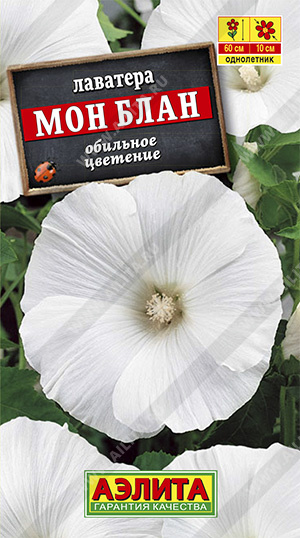 Семена лаватеры Мон Блан