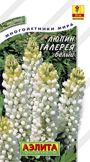 Семена люпина Галерея белый