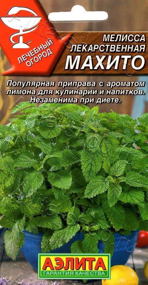 Семена мелиссы Мохито лекарственная