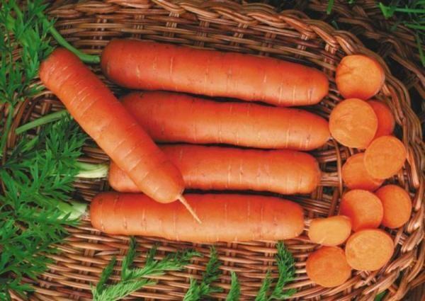 морковь деликатесная арт. 5331