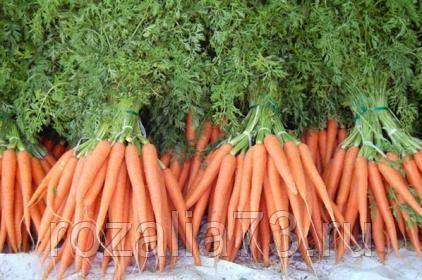 морковь пучковая арт. 5270