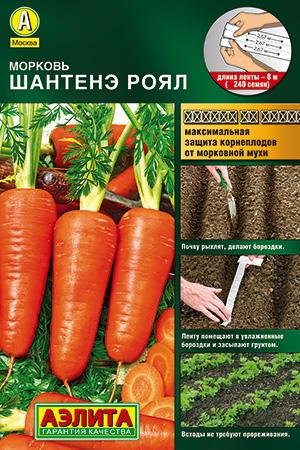 Семена моркови Шантенэ королевская