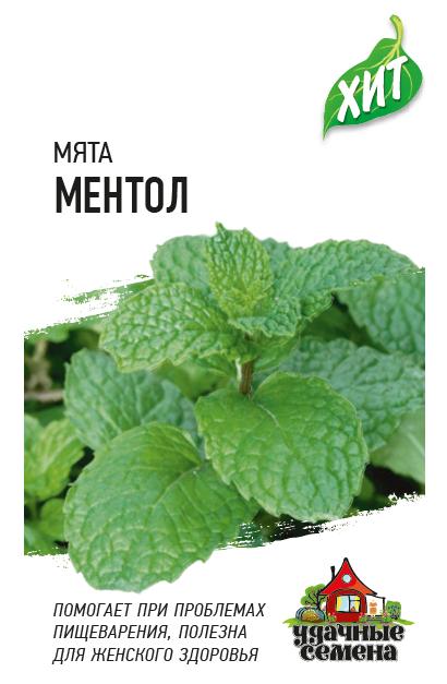 Семена мяты Ментол ( Г )