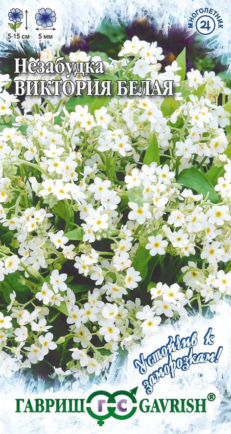 Семена незабудки Виктория белая 0,03 г ( Г )