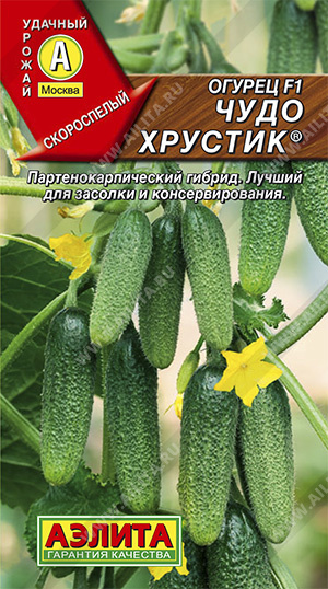 Семена огурцов Чудо хрустик