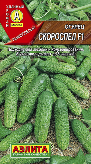 Семена огурцов Скороспел