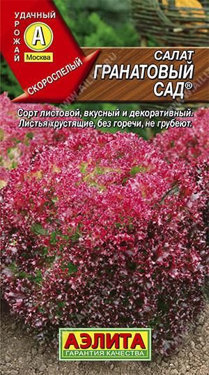 Семена салата Гранатовые кружева