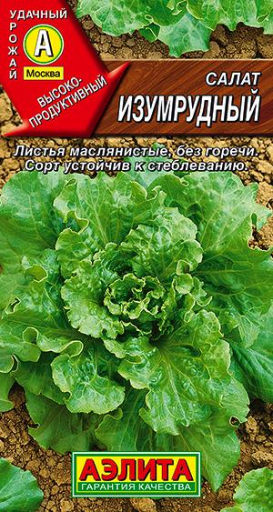 Салат Изумрудный листовой ---