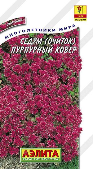 Семена седума Пурпурный ковер (очиток)