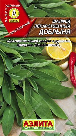 Шалфей лекарственный Добрыня --- Прян.