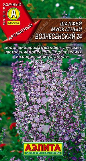 Семена шалфея мускатного Вознесенский