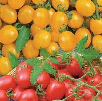 томат ампельный смесь арт. 5438