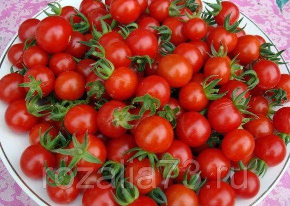 томат свит черри смесь арт. 5194