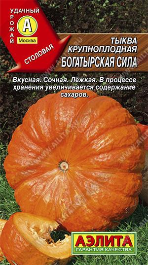 Семена тыквы Богатырская сила крупноплод,