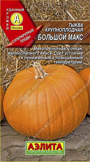 Семена тыквы Большой Макс