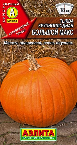 Семена тыквы крупноплодной Большой макс