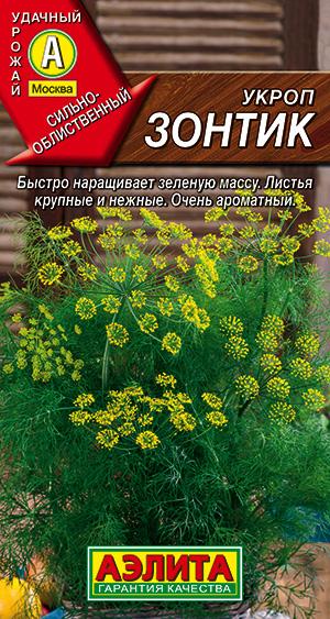 Укроп Зонтик ---